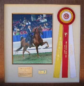 Champion Horse with Ribbon